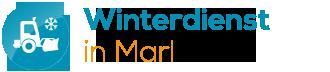 Winterdienst in Marl | Gelford GmbH